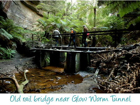 Glow worm tunnel bridge