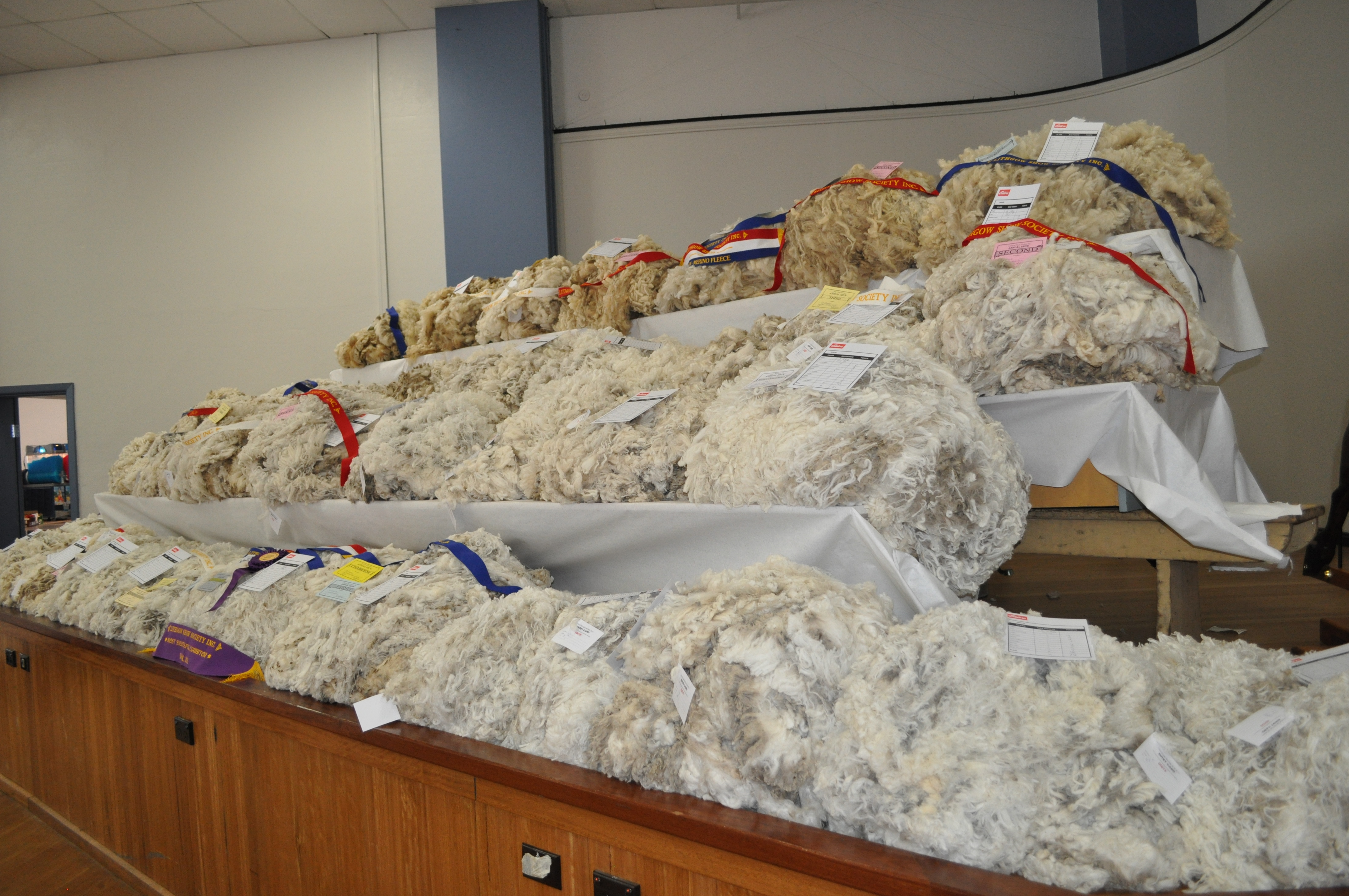 Lithgow show wool
