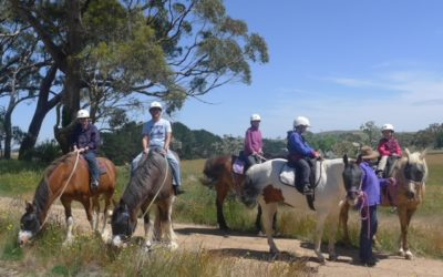 High Country Trail Rides & Farm Stays